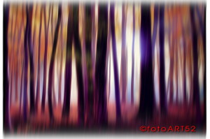 Fotopainting.. am liebsten gemalt!